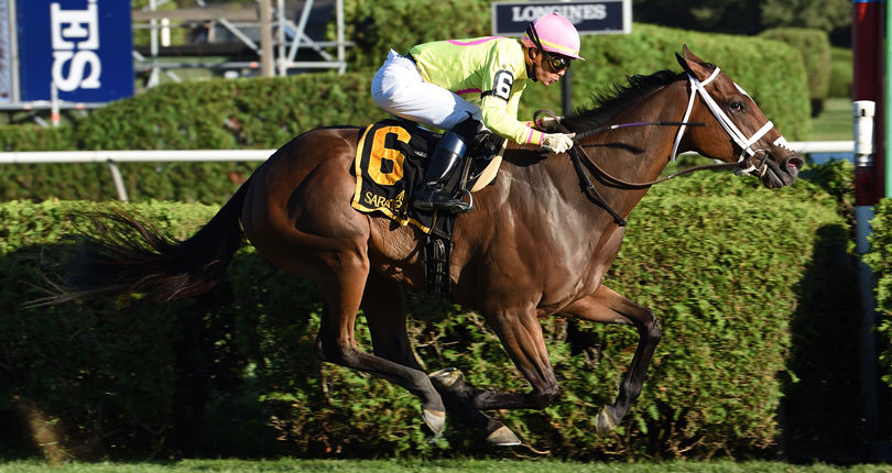 A last minute purchase, Thoughtfully attempts to reward owner's faith in Schuylerville (G3)